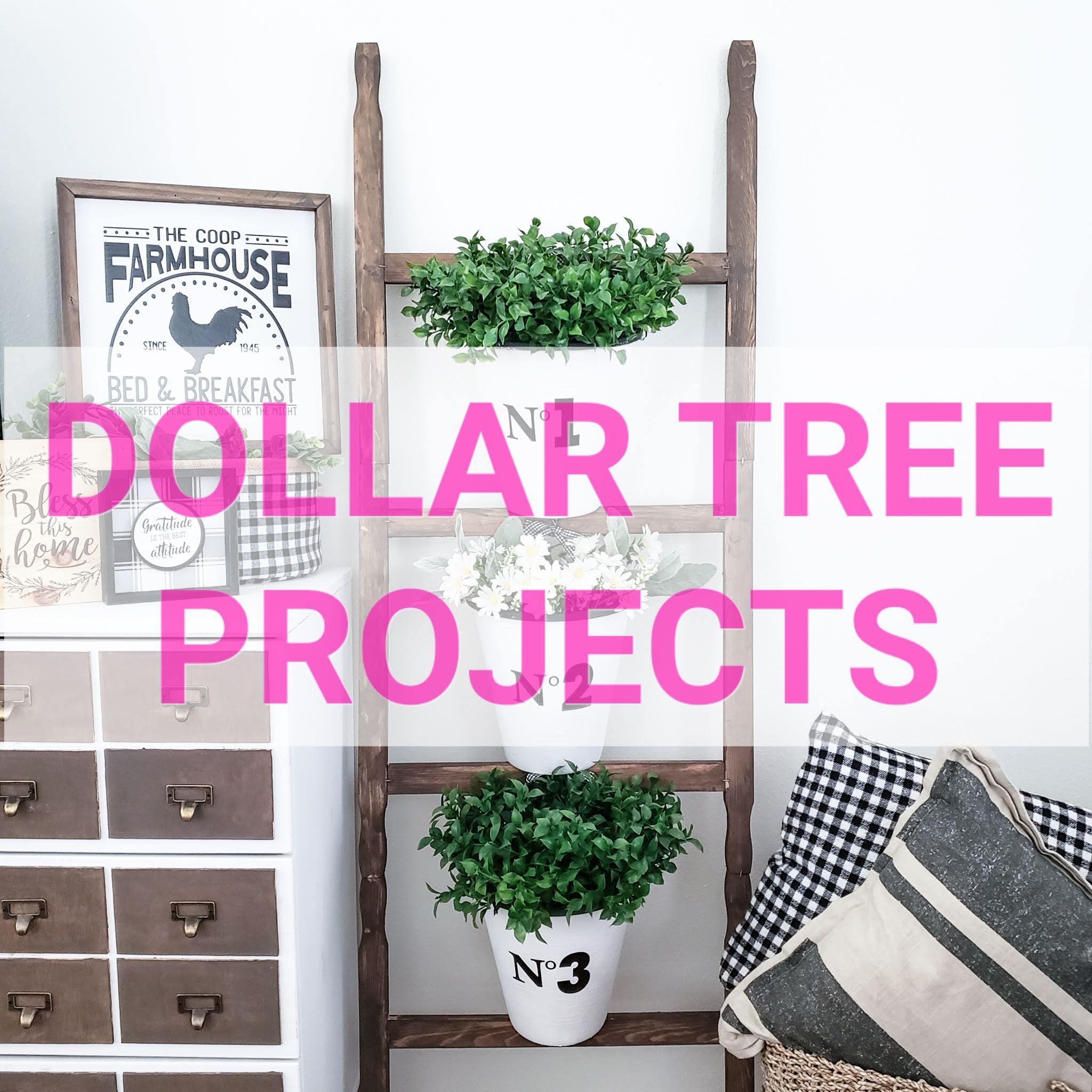 Dollar Tree Projects